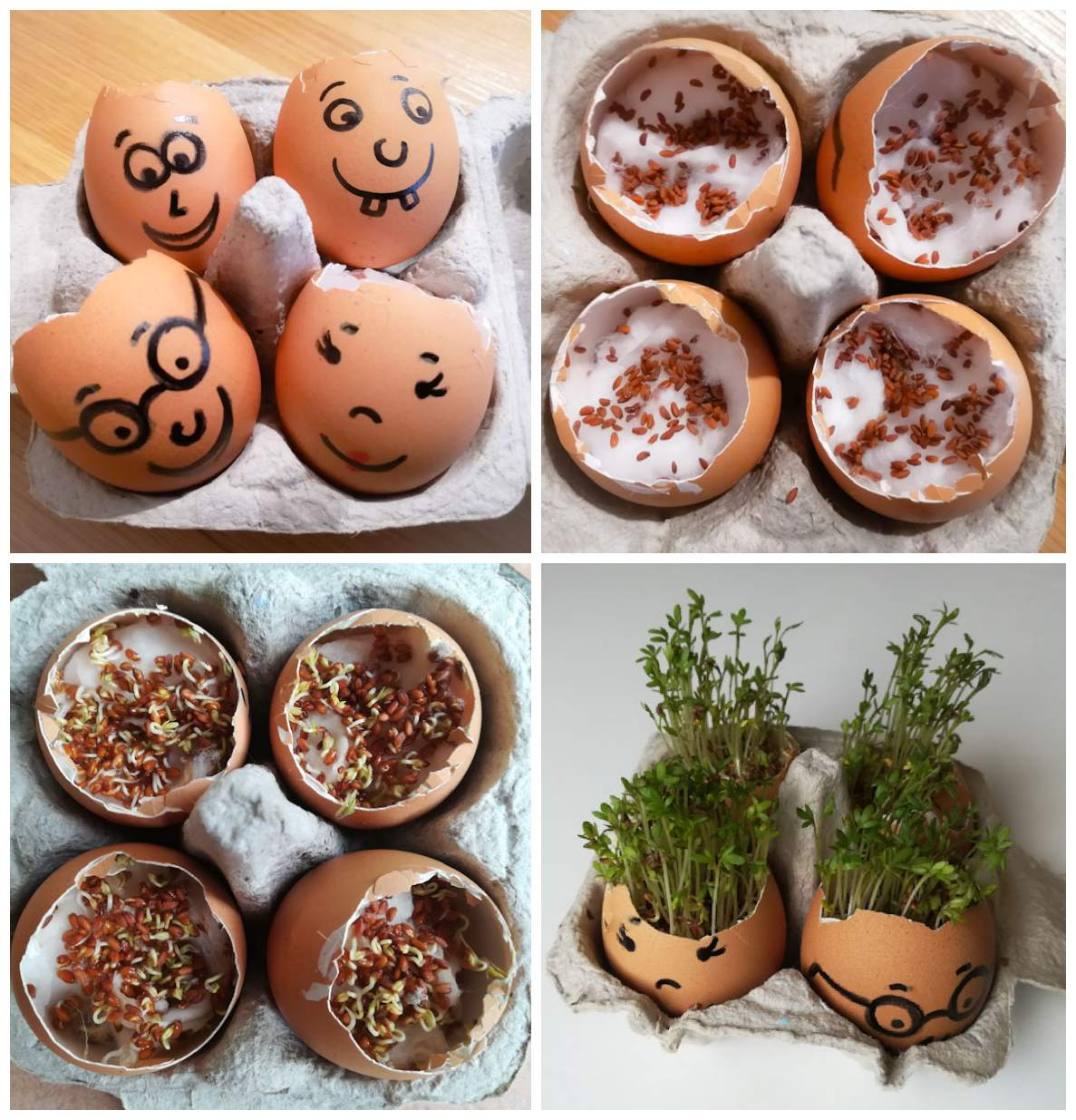 Uova capellute - Ghiotto e Pastrocchio