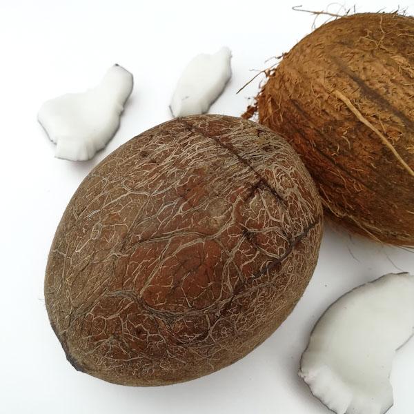 Come aprire una noce di cocco - Ghiotto e Pastrocchio
